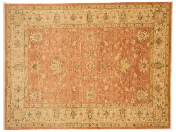 Afghan Chobi Ziegler 220x169 Handgeknüpft Teppich 170x220 Beige Blumenmuster Kurzflor