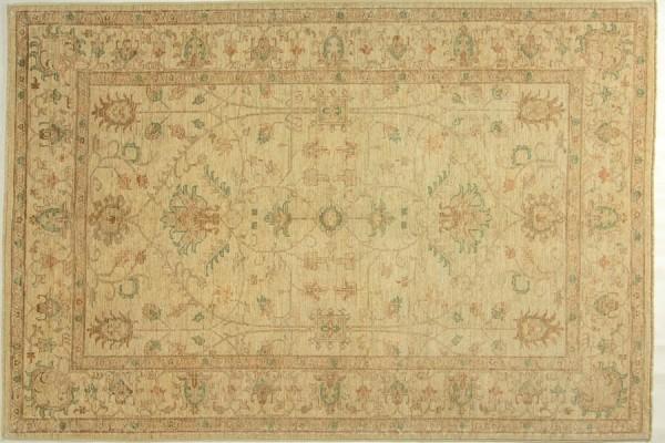 Afghan Chobi Ziegler 245x169 Handgeknüpft Teppich 170x250 Beige Orientalisch Kurzflor