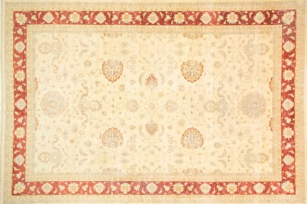 Afghan Chobi Ziegler 537x369 Handgeknüpft Teppich 370x540 Beige Blumenmuster Kurzflor