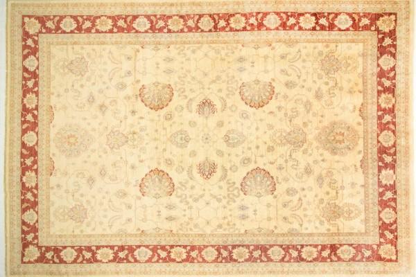 Afghan Chobi Ziegler 528x368 Handgeknüpft Teppich 370x530 Beige Blumenmuster Kurzflor