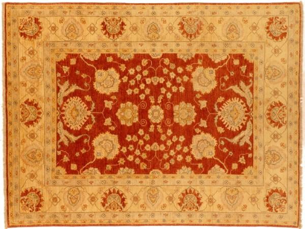 Afghan Chobi Ziegler 243x168 Handgeknüpft Teppich 170x240 Rot Orientalisch Kurzflor