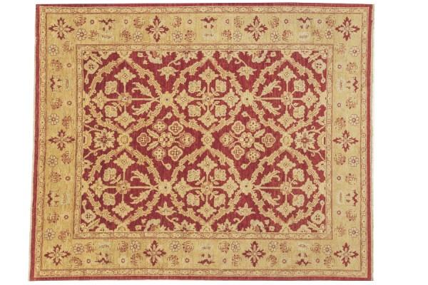 Afghan Chobi Ziegler 291x242 Handgeknüpft Teppich 240x290 Gold Blumenmuster Kurzflor