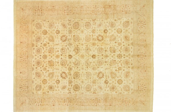 Afghan Chobi Ziegler 439x368 Handgeknüpft Teppich 370x440 Beige Blumenmuster Kurzflor