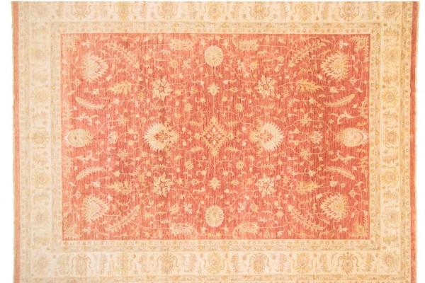 Afghan Chobi Ziegler 516x406 Handgeknüpft Teppich 410x520 Rot Orientalisch Kurzflor